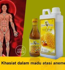 Khasiat dalam madu atasi anemea